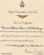 Operational Wings Award – Digital image of Donald Stewart Brillinger's posthumous Operational Wings award