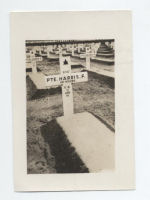 Temporary Grave Marker – Pte. Frank Harris B.2162
