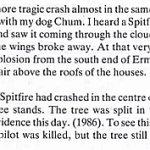 Description of plane crash