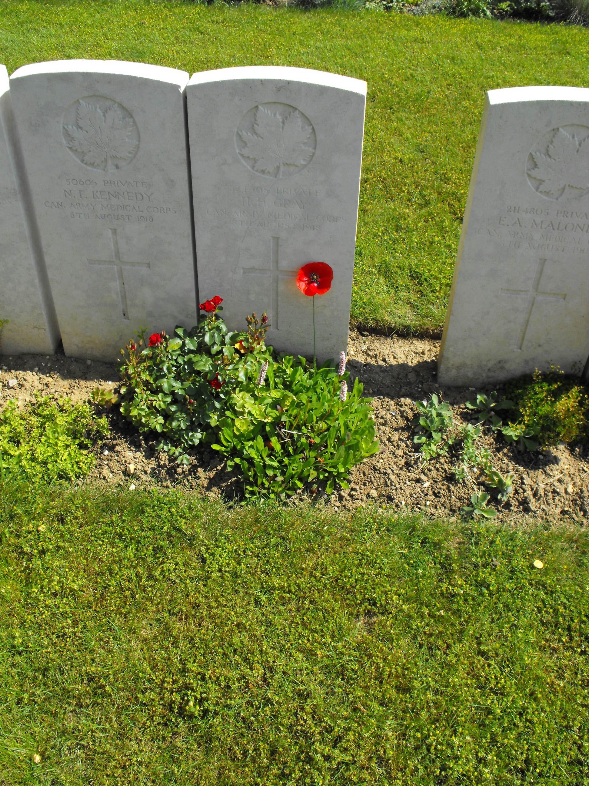 Grave Marker – Henry Gray 2015