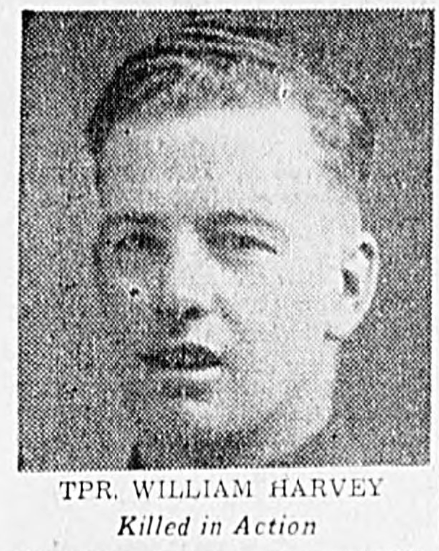 Photo of WILLIAM HARVEY TIPPETT – In memory of the men and women memorialized on the pages of the Winnipeg Evening Tribune. Submitted for the project, Operation: Picture Me