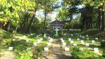 Cemetery – Vredenhof october 2013 Isle of Schiermonnikoog