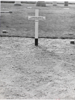 Grave marker – Submitted for the project, Operation Picture Me