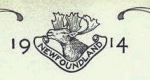 Royal Newfoundland Regiment – In memory of the men would served in the Royal Newfoundland Regiment during World War I and did not return home.  Submitted for the project Operation: Picture Me.
