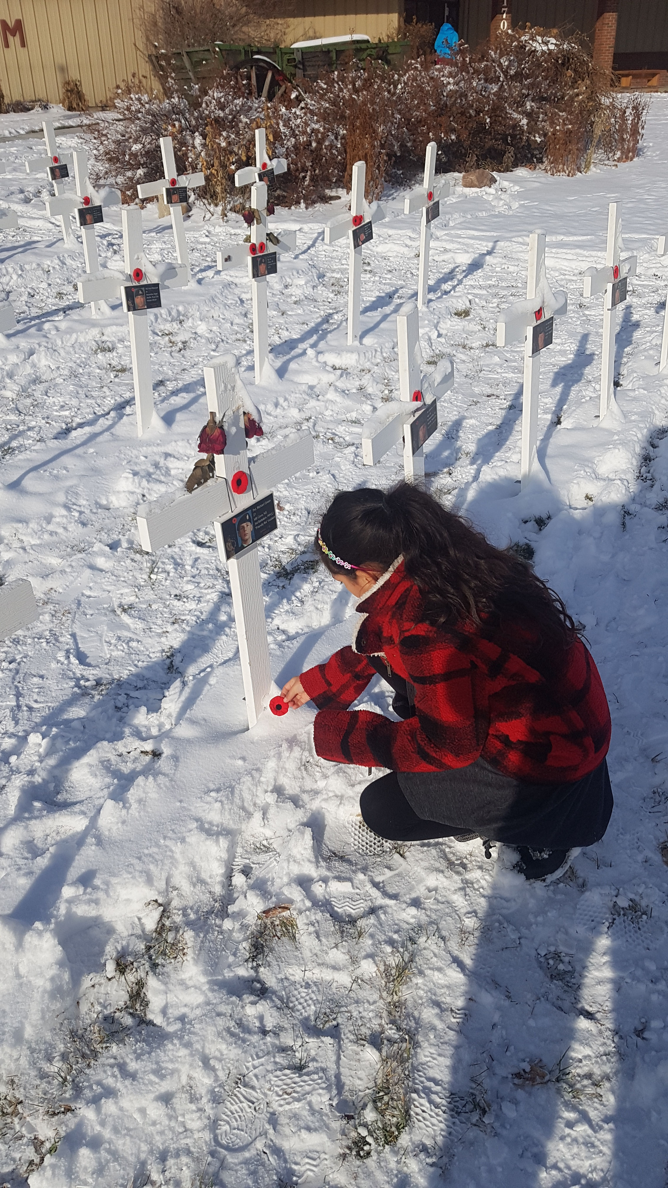 Paying respects – With a grateful heart my daughter Aurora Aguilar placing her poppy at a cross in honor of private Green in Airdrie Alberta Nov 11 2019.