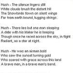 Poem – Tribute to fallen Snowbirds pilot Shawn McCaughey.