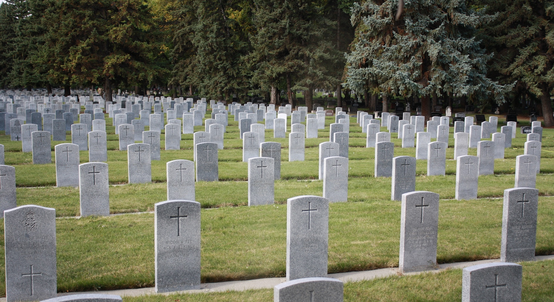 Cleaning Veterans' graves without damaging the stone