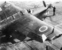 Safely on deck with damaged wing