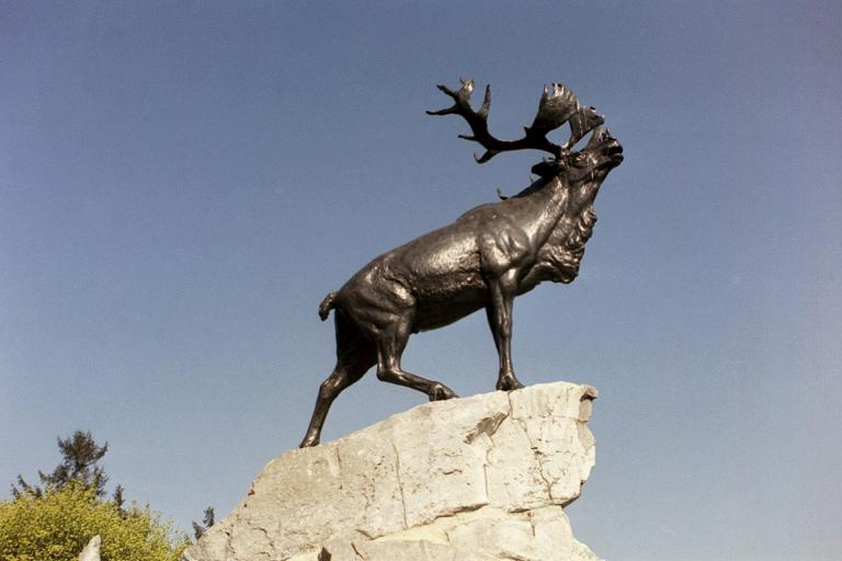 Beaumont-Hamel Newfoundland Memorial, France