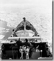 Sioux in icefield of Korean Coast, Feburary 1952