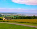 Serene View Ranch Psychological Services on Prince Edward Island receives funding to help Veterans and their families