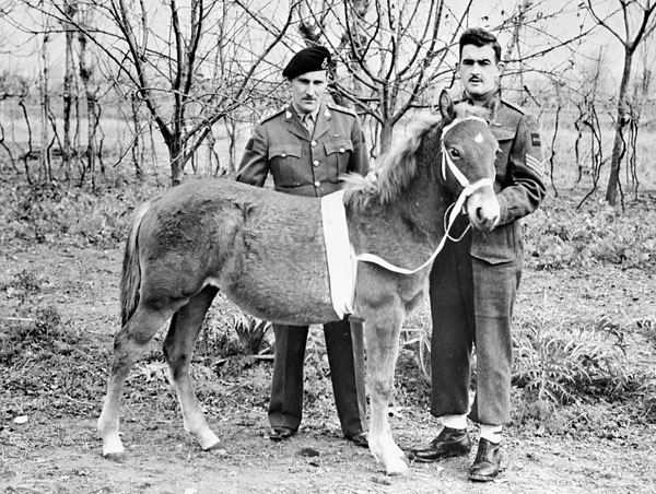 Princess Louise, the horse mascot, and two soldiers.