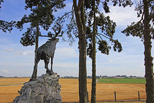 Caribou Monument at Gueudecourt Newfoundland Memorial