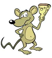 mouse holding piece of cheese