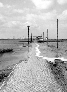 Road flooded by German forces near Furnes, September 1944. <em>(Library and Archives Canada PA-131227)</em>