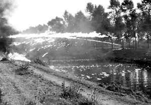 4th Canadian Armoured Division demonstrating the use of flame throwers across a canal, Balgerhocke, October 1944. <em>(Library and Archives Canada PA-131240)</em>
